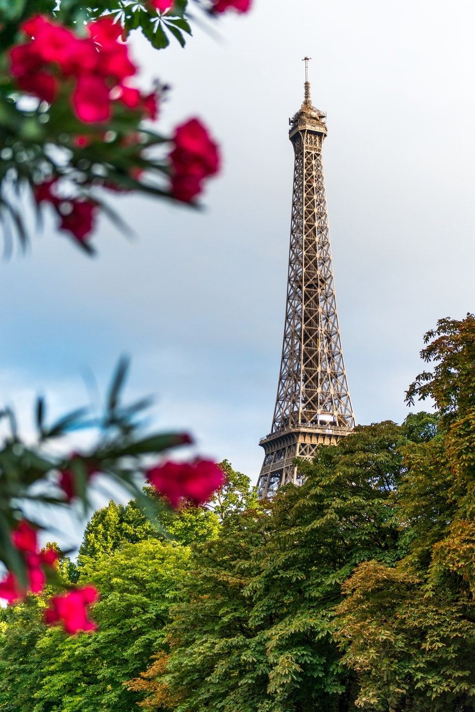 The Ultimate Paris Bucket List