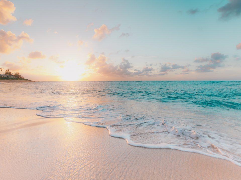 Safest Sunscreens 2019