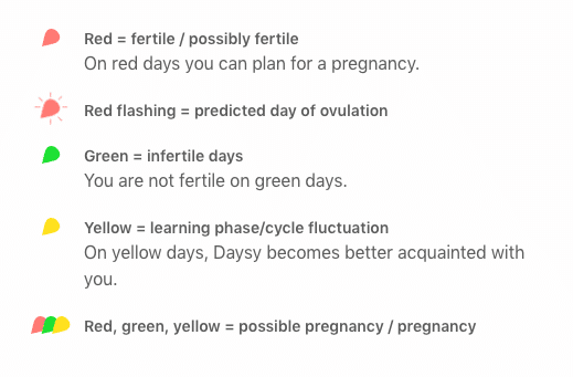 Daysy Fertility Tracker Review