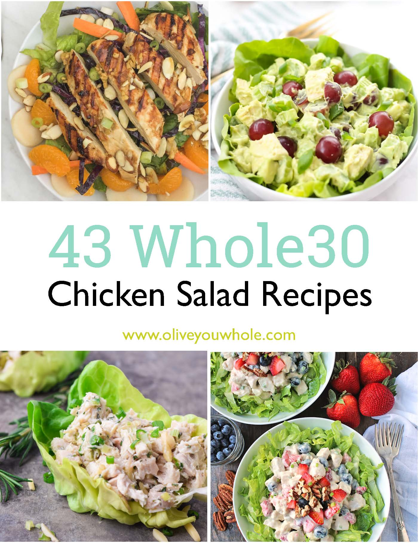 43 Whole30 Chicken Salad Recipes (Gluten, Dairy, and Grain Free)